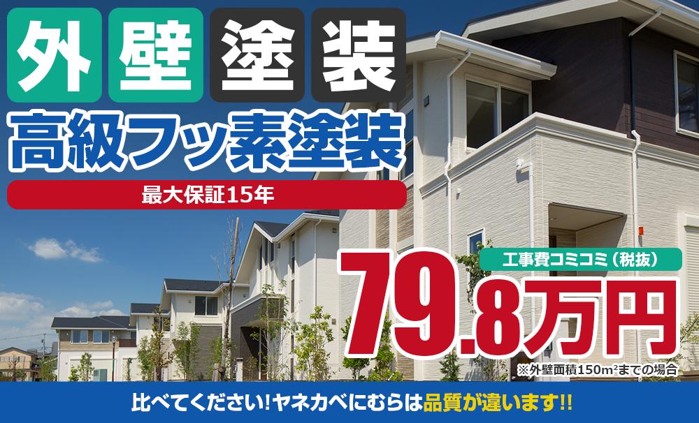 高級フッ素塗装塗装 79.8万円